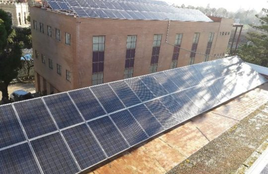 NIP, S.A. BIDDER FOR THE PHOTOVOLTAIC INSTALLATIONS CONTRACT OF ENDESA X.